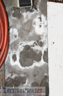 Prevent mold in your laundry room! Periodic, simple inspections can save you money... see also: Practical TIPS FOR MOLD PREVENTION in the laundry room