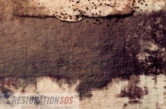 Prevent mold in your basement! Periodic, simple inspections can save you money... see also: Practical TIPS FOR MOLD PREVENTION in the basement