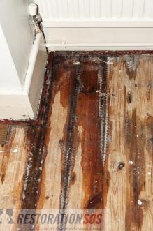 How To Handle Repair Water Damage In Floors