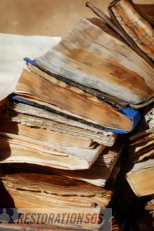 Learn how to clean, dry, repair, and disinfect books after water damage. Control environmental conditions, prevent mold, and salvage books using four simple methods.