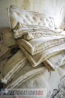 Learn how to clean, dry, repair, and disinfect water damaged Pillows. Regular pillows, rubber foam pillows, and down pillows